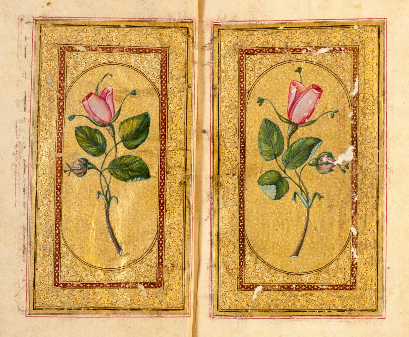 Rose Depictions,